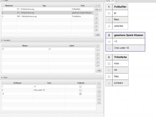 Fragebogendesigner zum Entwickeln eines Fragebogens, Exportmöglichkeiten nach Office und HTML