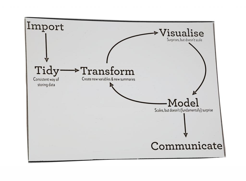 Darstellung eines typischen Data Science Workflows von Hadley Wickham
