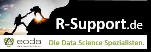 Professioneller Support für die Programmiersprache R
