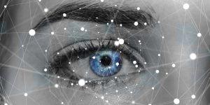 Neuronale Netze im Blick